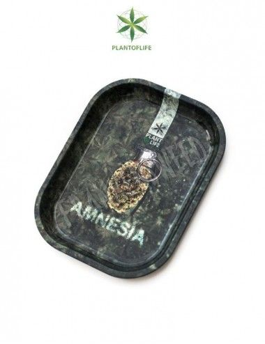 Bandeja Plant of Life Amnesia Mini